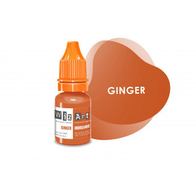 Ginger WizArt USA пигмент для коррекции 10 мл