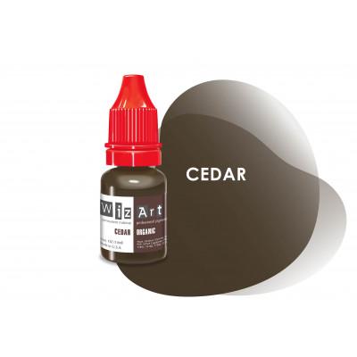 Cedar WizArt USA   pigment for PM eyebrows